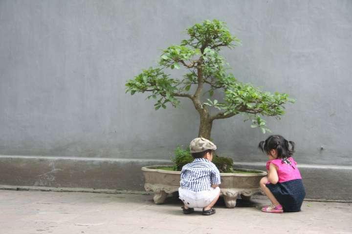 Vietnam individuele reis boeken
